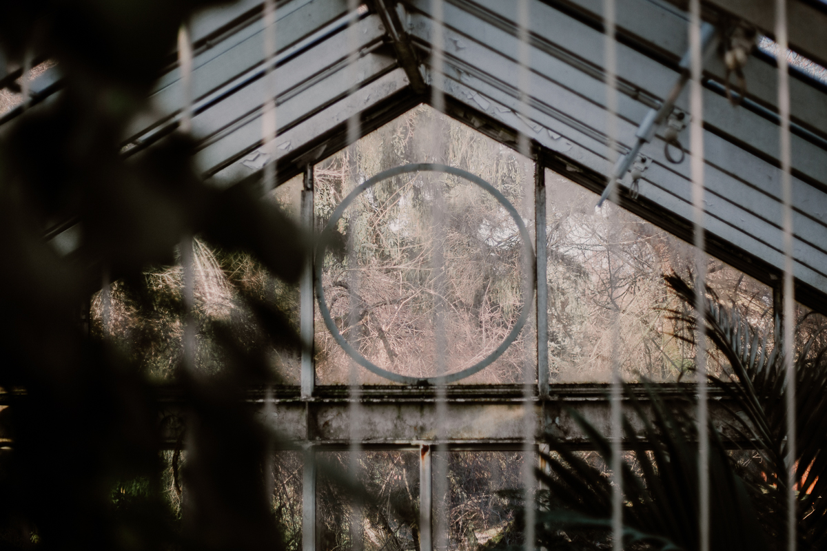 Séance photo de couple au ajrdin botanique de genève verrière