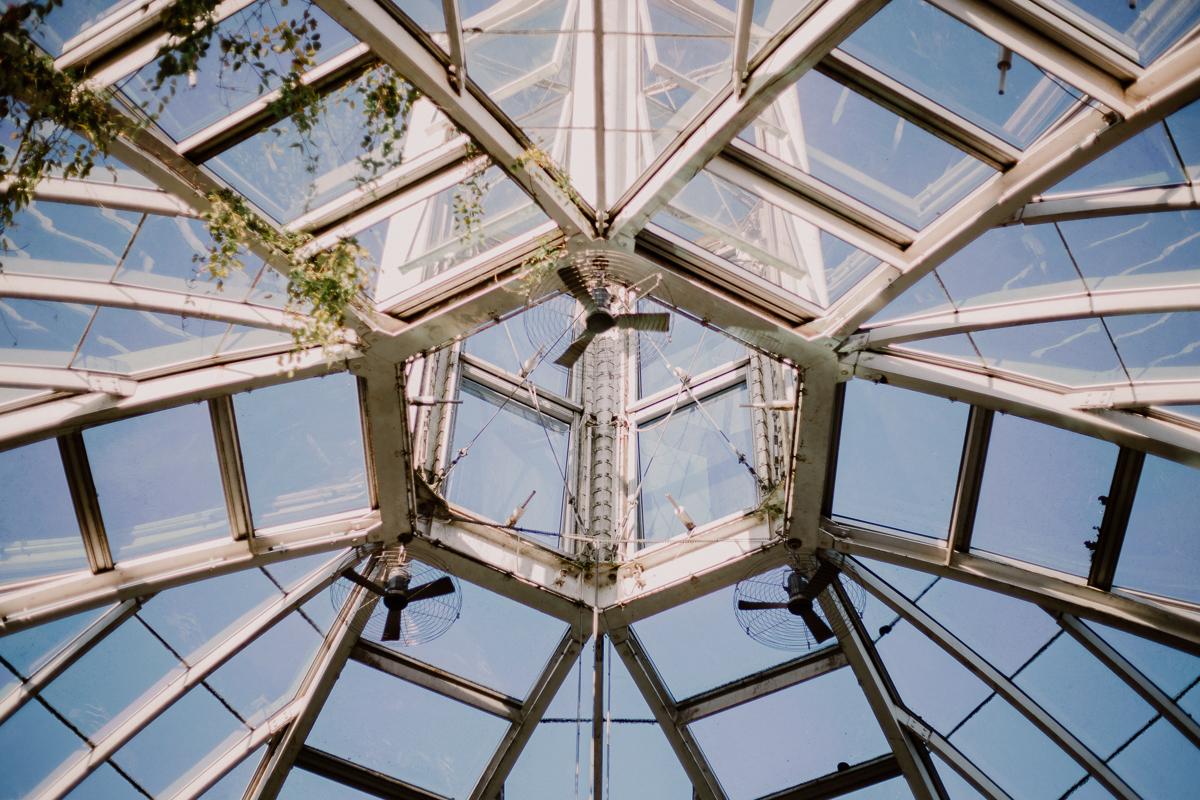 Séance photo de couple au ajrdin botanique de genève ciel